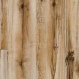 Cotton Wood 20839