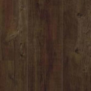 Latin Pine 24852